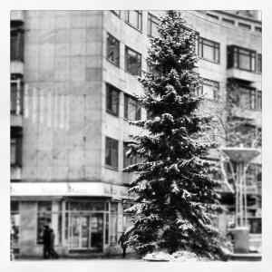 La prima neve su Malmö