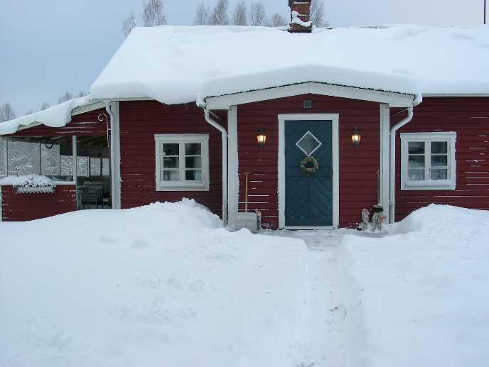 Da Wikipedia - foto di Susann Schweden. Licenza Creative Common