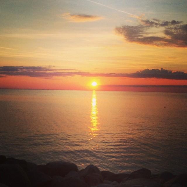 Goodnight Sun 2014