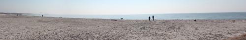 La spiaggia di Skanör (foto di questa primavera)