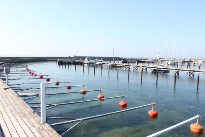 Il porto di Skanör (foto di questa primavera)